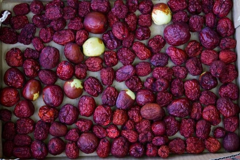 Jujubes drying in a box in Richie Huang's backyard in Corona look a bit like giant red raisins. Some varieties of the fruit are best eaten fresh; others are better dried.