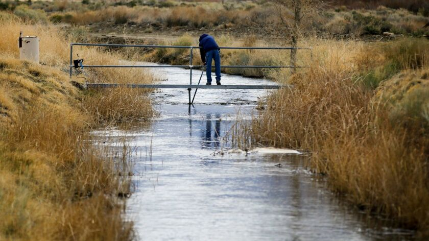 A government employee takes readings on a tributary of the Owens River near Bishop, Calif., in 2017.