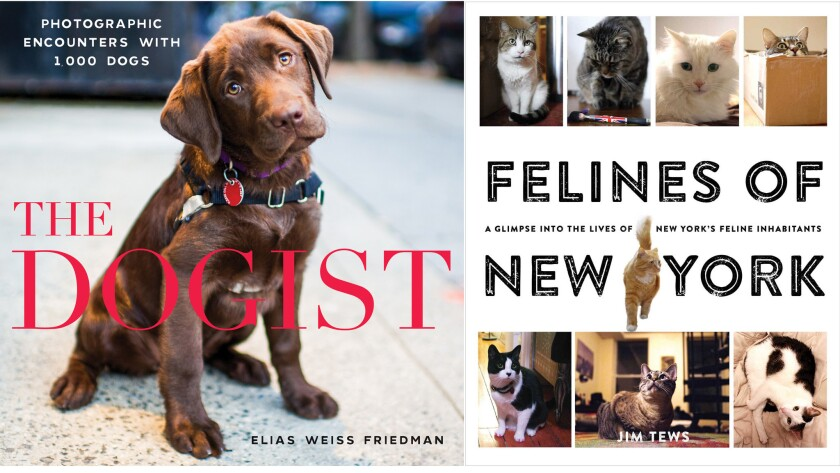 """""""The Dogist"""" and """"Felines of New York"""""""