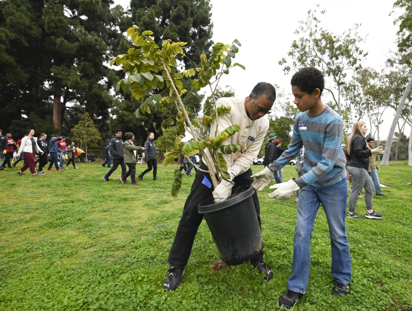 Mark Wintersmith, left, and Ty Wintersmith work to plant a tree Monday at an Interfaith day of service held to commemorate Martin Luther King Jr. at Balboa Park.