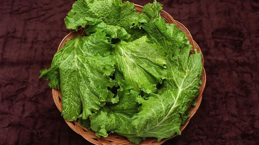 This basket of kale may not look like a fountain of youth, but eating leafy green vegetables every day was associated with significantly slower decline in memory and thinking skills, according to a new study.