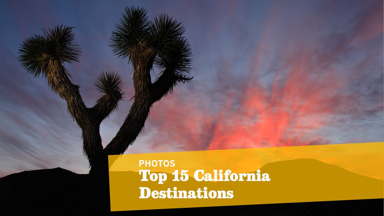 There's no place like home. So explore California like a native. Here's our checklist of not-so-obvious but oh-so-essential sites. But tell us -- are we nuts? Today, with full expectation of howling dissent and snorts of derision, we present the Travel section's first California Golden 15. We, your neighbors, do so as the holiday travel season approaches and as distant strangers peddle their compendiums of places you should visit before you die. These are 15 places we think you must visit to grasp the wonder of this state, including Joshua Tree National Park, shown here. This is not California for beginners -- not Disneyland, not Hearst Castle, not the San Diego Zoo, not even Sutter's Mill. This is the California that speaks to the seasoned native and the thoughtful newcomer, the California that waits beyond the well-explored city limits of Los Angeles, San Diego and San Francisco. (Don't get worked up about the numbers; the list of destinations is random, not by ranking.) -- Christopher Reynolds ALSO: Your California Bucket List: Essential adventures and experiences in the Golden State »