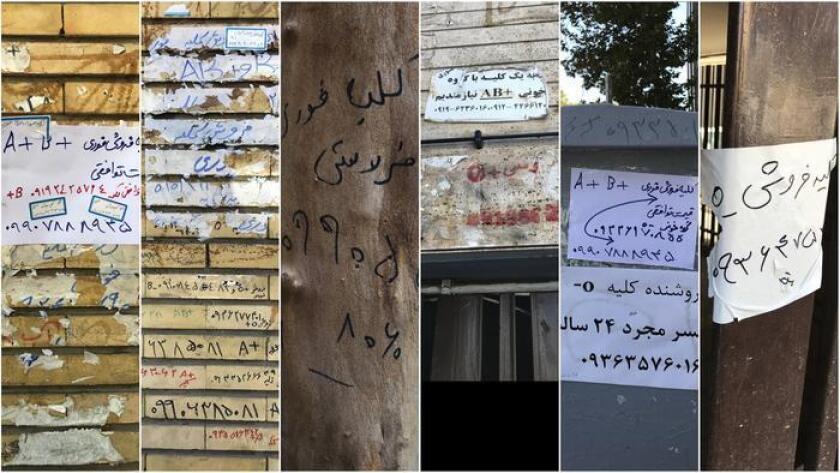 Anuncios de riñones sobre muros, troncos de árboles y otros objetos frente al Centro de Riñones Hasheminejad, en Teherán. Nuevos avisos aparecen casi a diario (Shashank Bengali / Los Angeles Times).