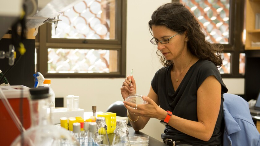 Caltech microbiologist Dianne Newman studies the ways that microbes helped shape the evolution of Earth, making it habitable for us.