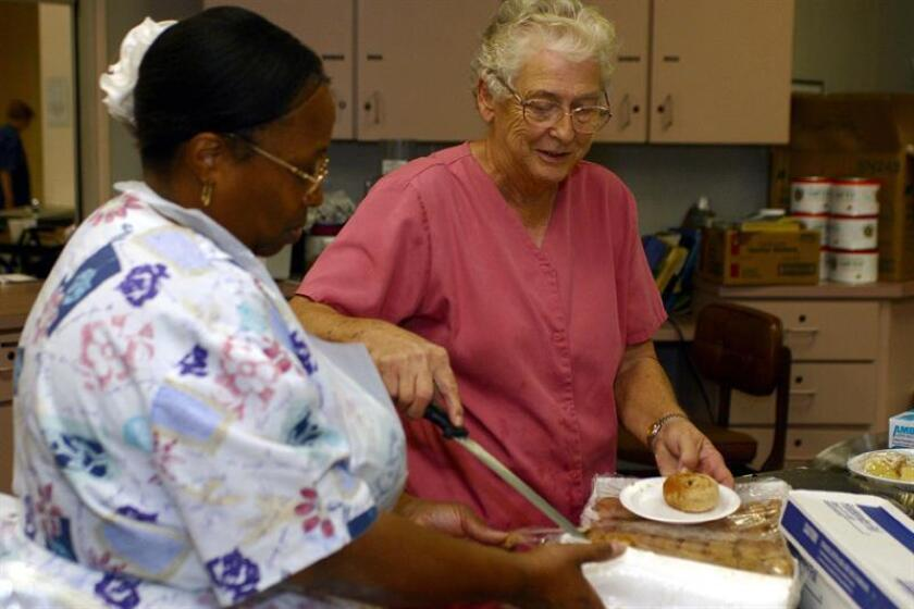 Una dieta baja en proteínas y rica en carbohidratos podría ser la clave de la longevidad, especialmente para un envejecimiento sano del cerebro, según ha demostrado un experimento con ratones publicado hoy por la revista científica Cell Reports. EFE/Archivo