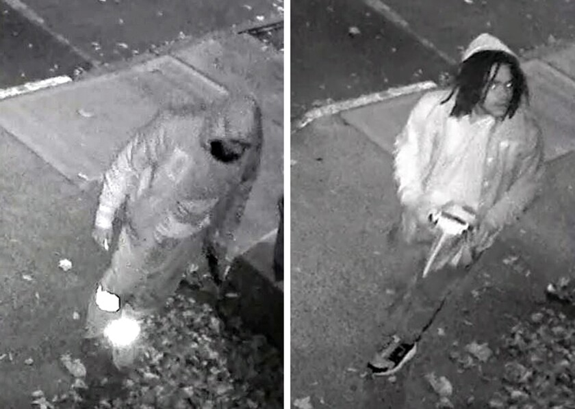 Jarrick Wiltshire, 18, and Daul Moultrie, 17, of Brooklyn face aggravated harassment for drawing swastikas and racist graffiti on houses on Garden Place near Joralemon St. in Brooklyn Heights on Oct. 30th.