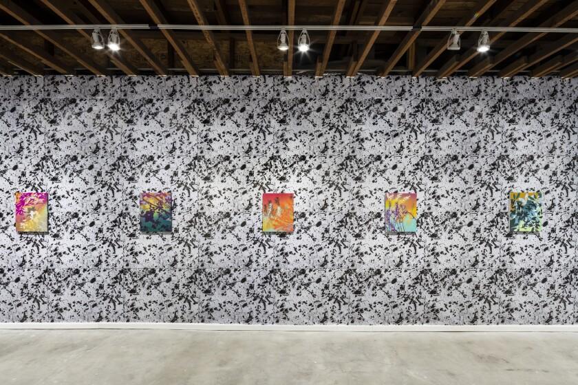 "An installation view of ""Shikata ga nai"" by Devon Tsuno"