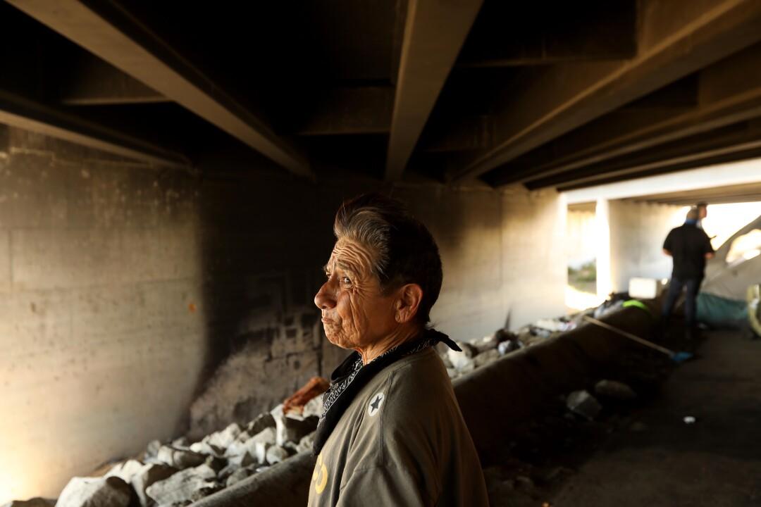 Ramona Gutierrez, 68, stands near her encampment under the 605 Freeway in Arcadia.