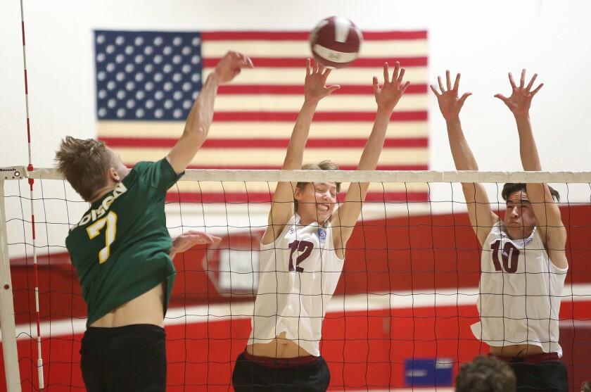 Photo Gallery: Edison vs. Laguna Beach in boys' volleyball