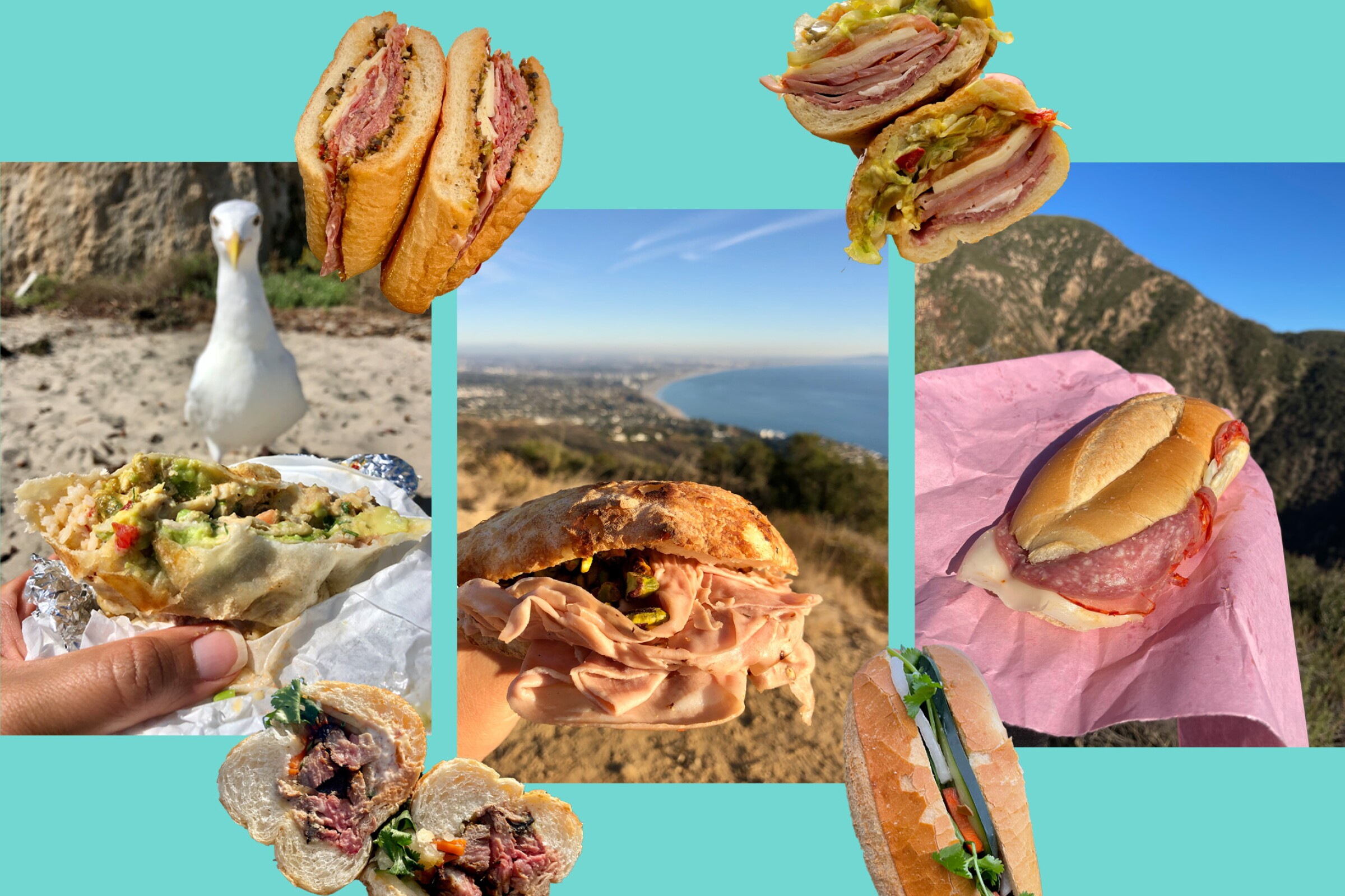 A photo collage of various sandwiches