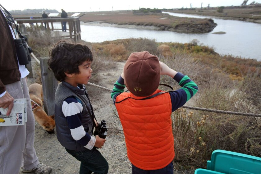 Rowan Lane, 5, left, tell his friend Graham Williams, 5, about the bufflehead ducks they are spotting at the San Elijo Lagoon during an event Sunday featuring information on migrating birds of the lagoon. Photo by Bill Wechter