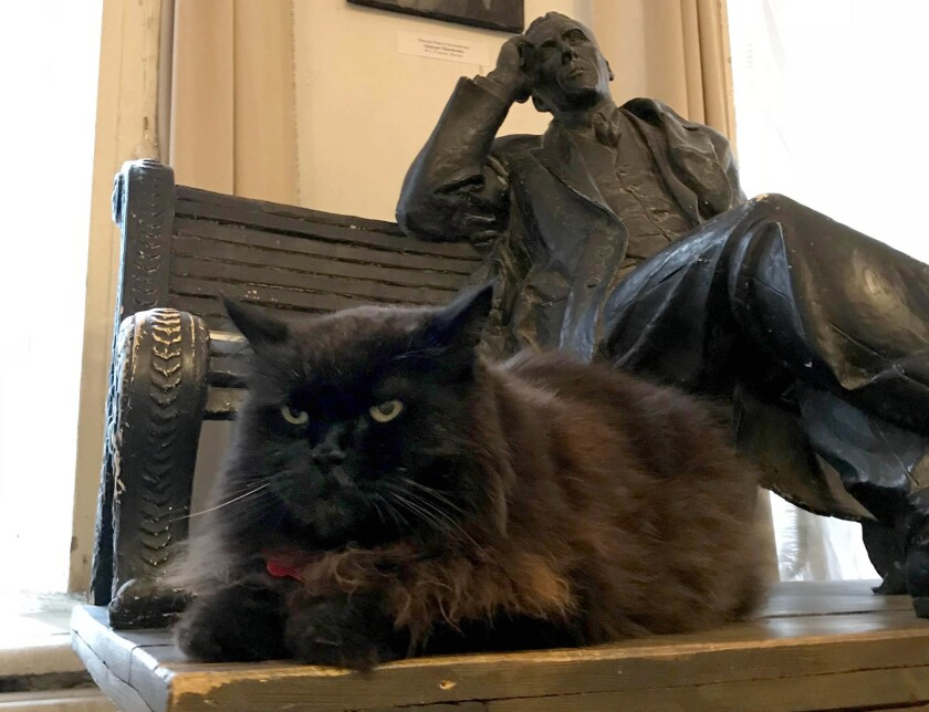 Begemot the cat sits on a table in the Mikhail Bulgakov Theater-Museum in Moscow. The cat disappeare