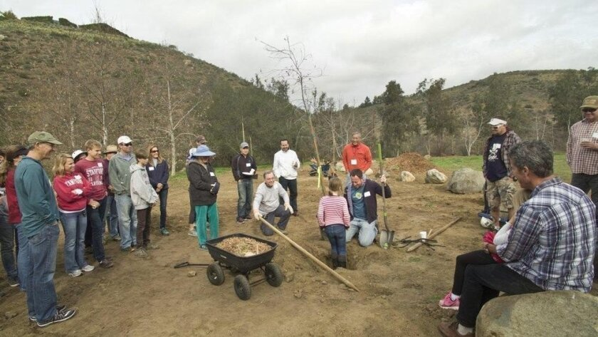 A community planting event was held last year at the Arroyo property.