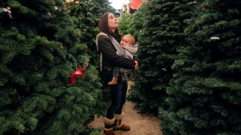 Tiffany Hartley looks for Christmas trees with her 11-month-old son Jacob and his brother Noah, 8, at Scripps Ranch Christmas Tree in San Diego. Trees are more expensive this year due to a supply shortage.
