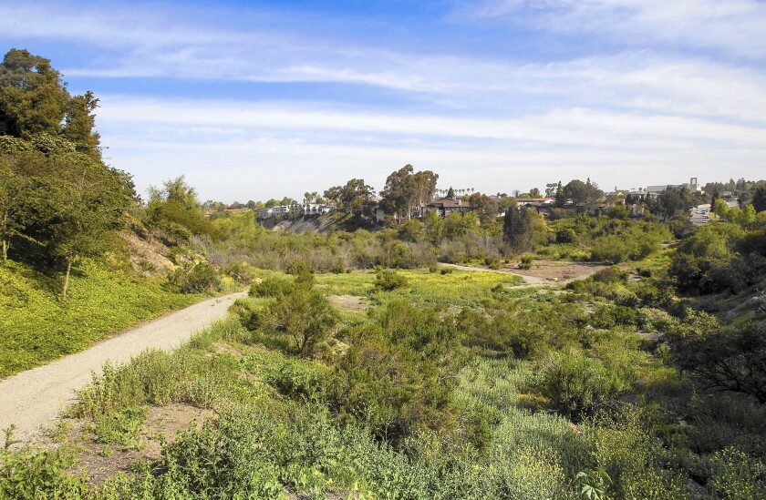 Plans for Big Canyon Nature Park, a 50-acre habitat in Newport Beach, include adding a network of trails that would loop around the reserve, connecting Jamboree Road with Back Bay Drive.