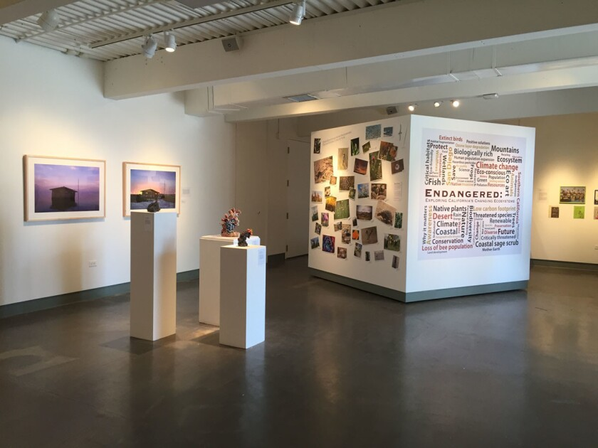 Art exhibition Endangered: Exploring California's Changing Ecosystems at San Diego Mesa College. (Courtesy photo)