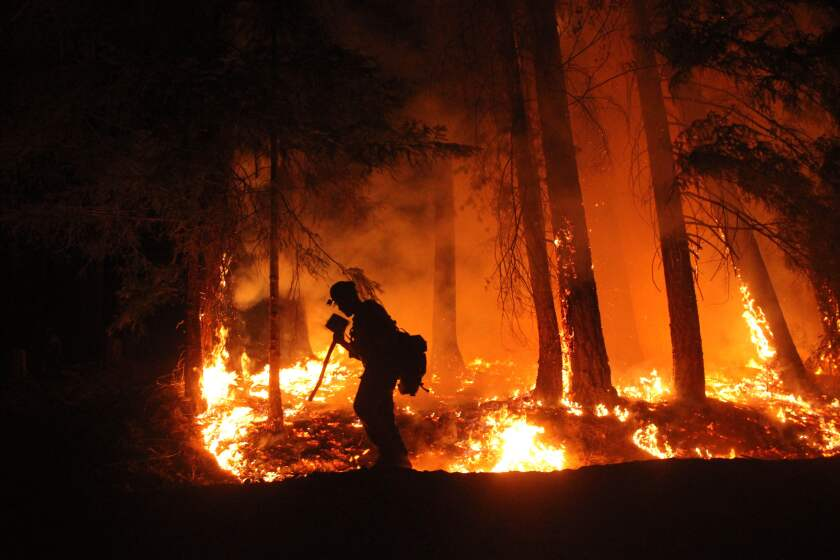 A member of the Lassen Hotshot crew fighting the August Complex fire shields his face as he walks past a fire line