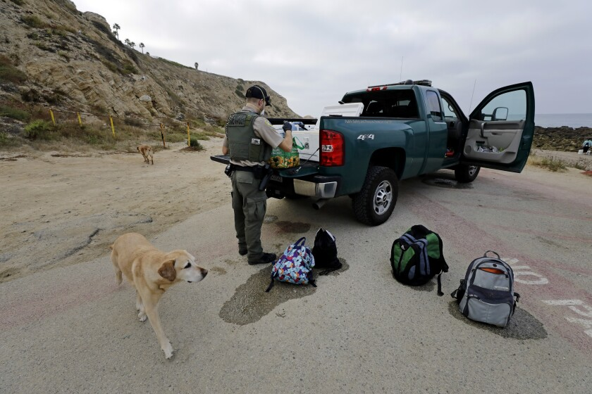 Game warden Doug Wall confiscates bags of mussels collected without a license at White Point Beach in San Pedro.