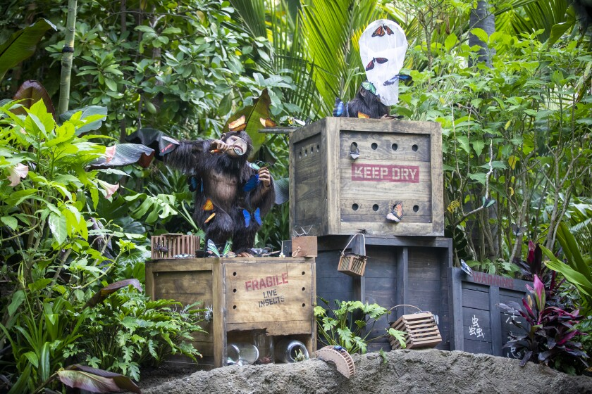 Apes climb on crates in another Jungle Cruise ride scene