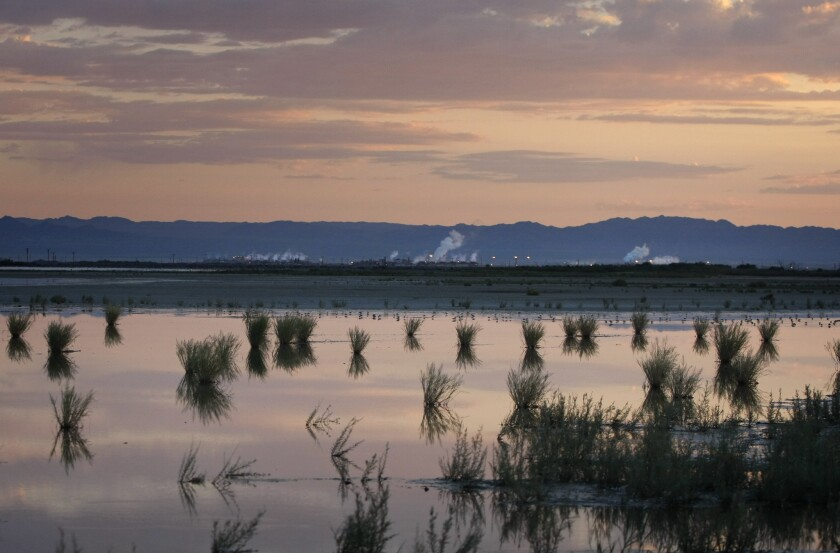 Steam rises from several geothermal electric generating plants on the southeast shore of the Salton Sea near Calipatria, Calif. In the foreground is an area of shrinking marshland that's drying up as the level of the Salton Sea recedes.