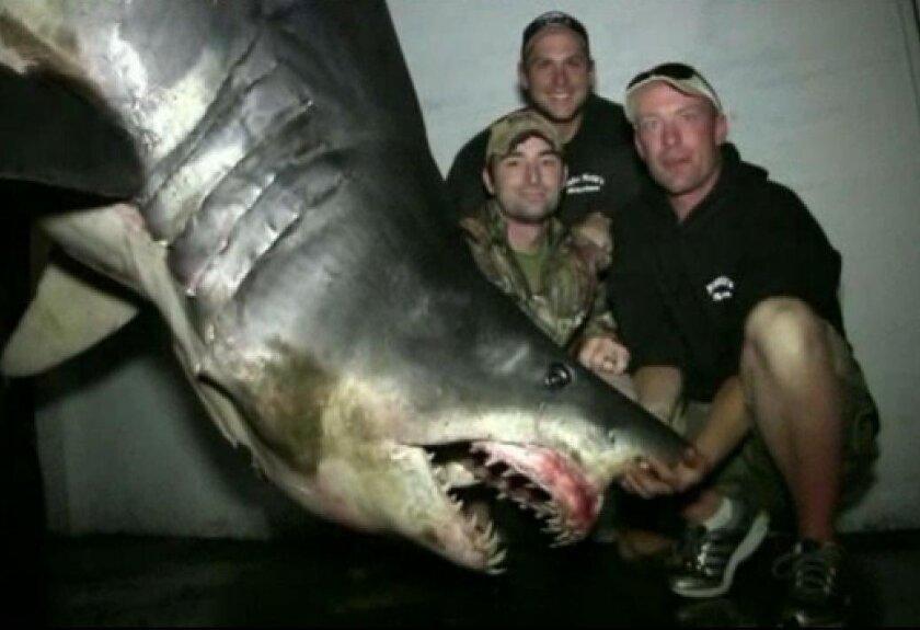 1,323 pound mako shark.