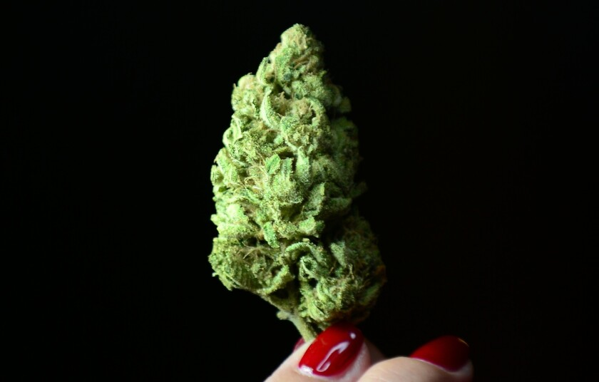 Some evidence backs claims that marijuana is helpful for pain control, appetite loss and some effects of multiple sclerosis. But more rigorous testing is needed.