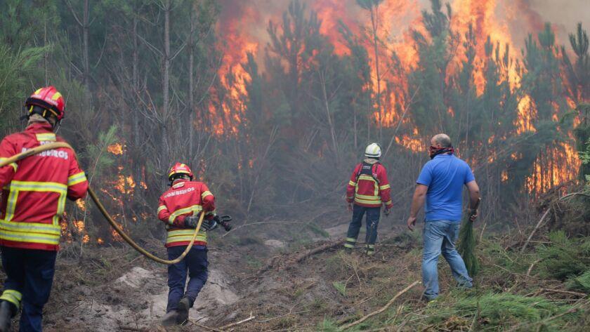 Forest fire in Marinha Grande, Portugal - 16 Oct 2017