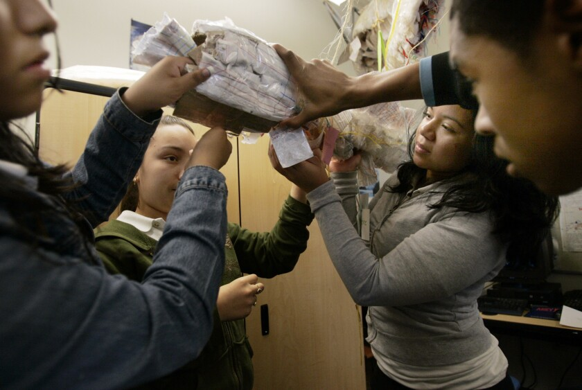 A marine biology class at Alliance Gertz–Ressler High School, a charter school in Los Angeles, builds a replica of a bowfin.
