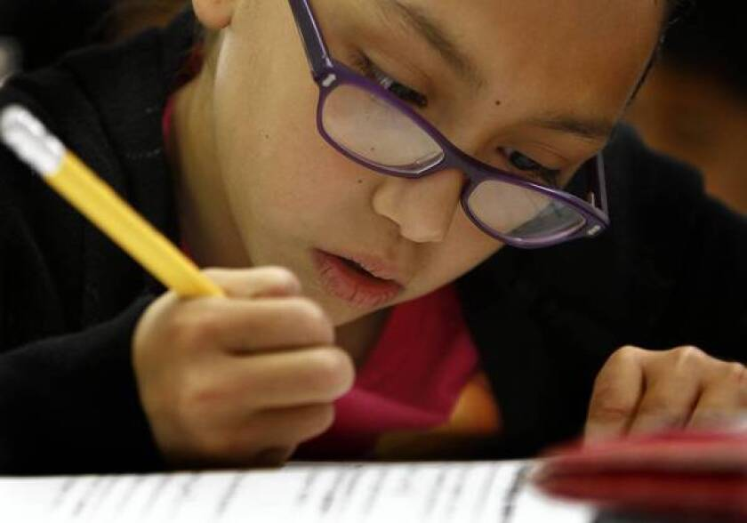 The proposal would suspend reports on the performance of individual students and schools this year since the test isn't ready for that purpose. Above, Zeimi Deleon studies math at Los Angeles Elementary in 2011.