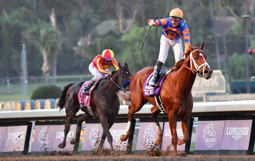 Jockey Irad Ortiz Jr. rides Vino Rosso to victory in the Breeders' Cup Classic race at Santa Anita Park in Arcadia on Saturday.