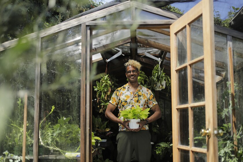Hank Jenkins, owner of the Plant Provocateur boutique, in his greenhouse at his Silver Lake home.
