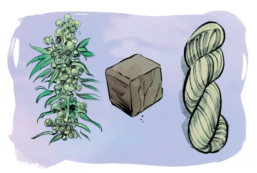 Marijuana, left, refers to the female cannabis plant; hashish, center, is a cannabis resin concentrate; hemp is the fibrous product made from male cannabis plants.