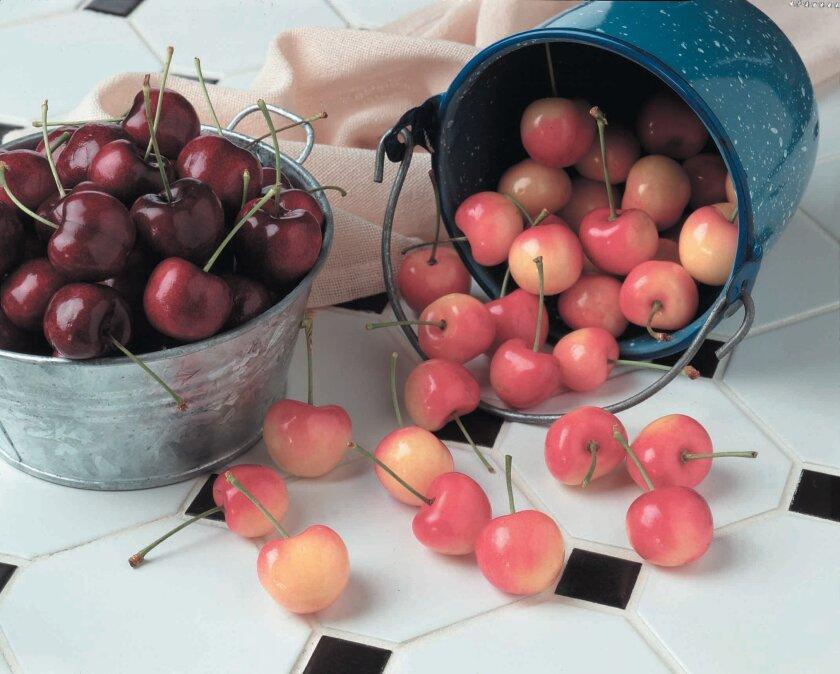 Rainier cherries.