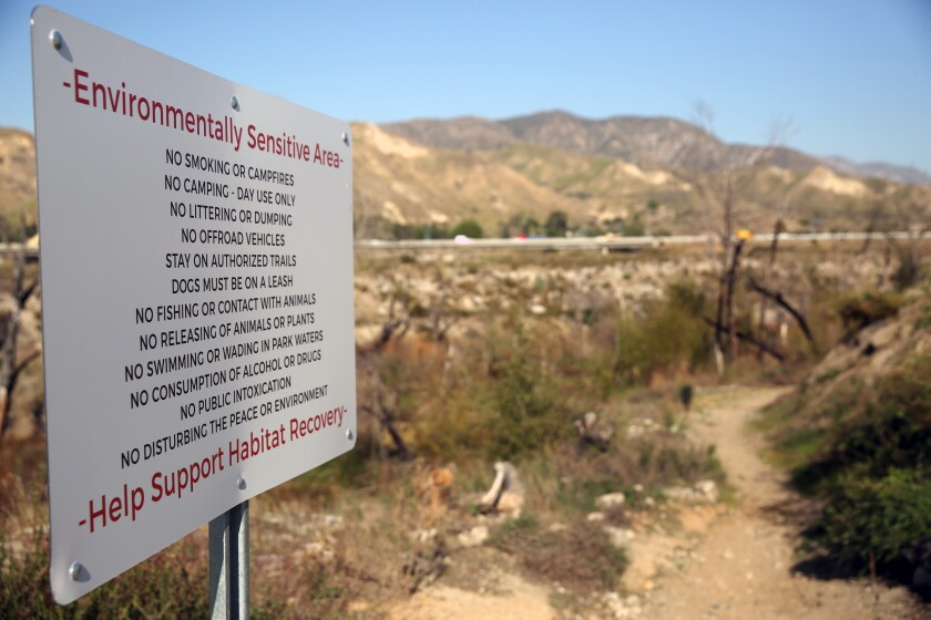 Follow the trail to Tujunga Ponds, but follow the rules too.