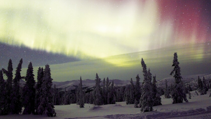 Mush! Explore Alaska on an Iditarod adventure tour