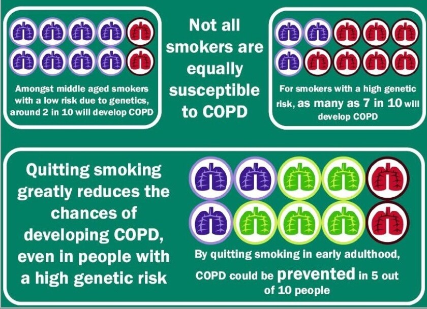 How genetics and smoking influence the risk of COPD.
