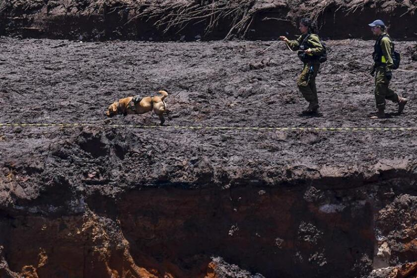 Authorities carry out search-and-rescue efforts in the southeastern Brazilian town of Brumadinho after the Jan. 25, 2019, collapse of a tailings dam at a mine owned by Brazilian mining giant Vale. EPA-EFE/File