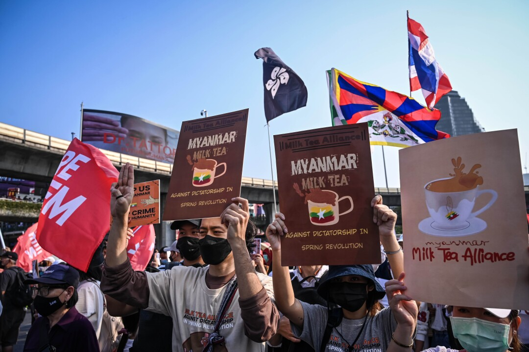 Protesters hold Milk Tea Alliance placards and various flags