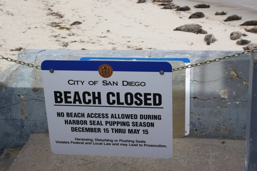 This sign directs people to stay off the beach until May 15, 2015