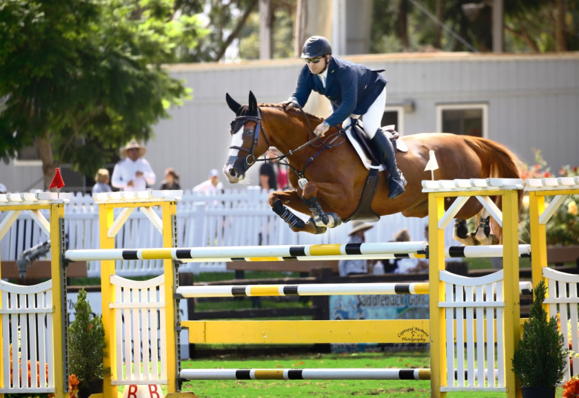 Jason McArdle executes a jump on Elicole during a show horse competition.