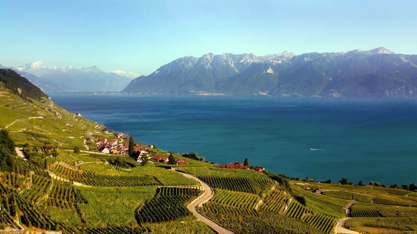 The Lavaux terraced vineyards were planted nearly a thousand years ago on dizzyingly steep slopes al