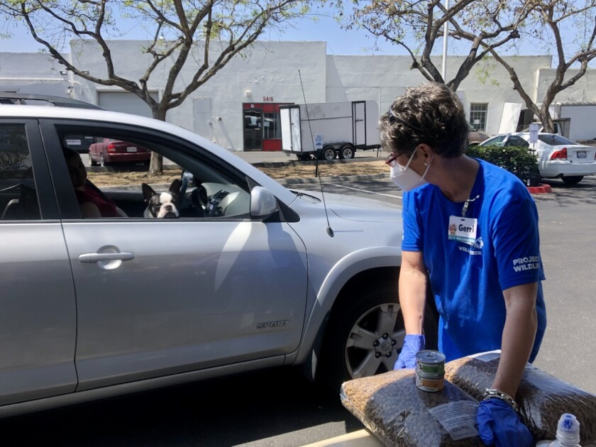 A volunteer gives out pet food at a drive thru distribution at the San Diego Humane Society