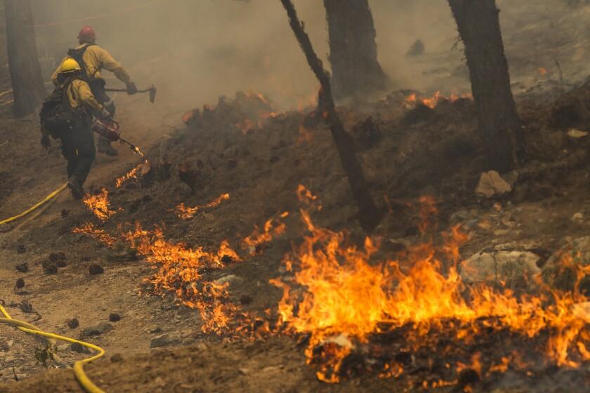 Strike teams light backfires to battle the Lake fire near the Santa Ana River Trail in the San Bernardino National Forest on June 20.