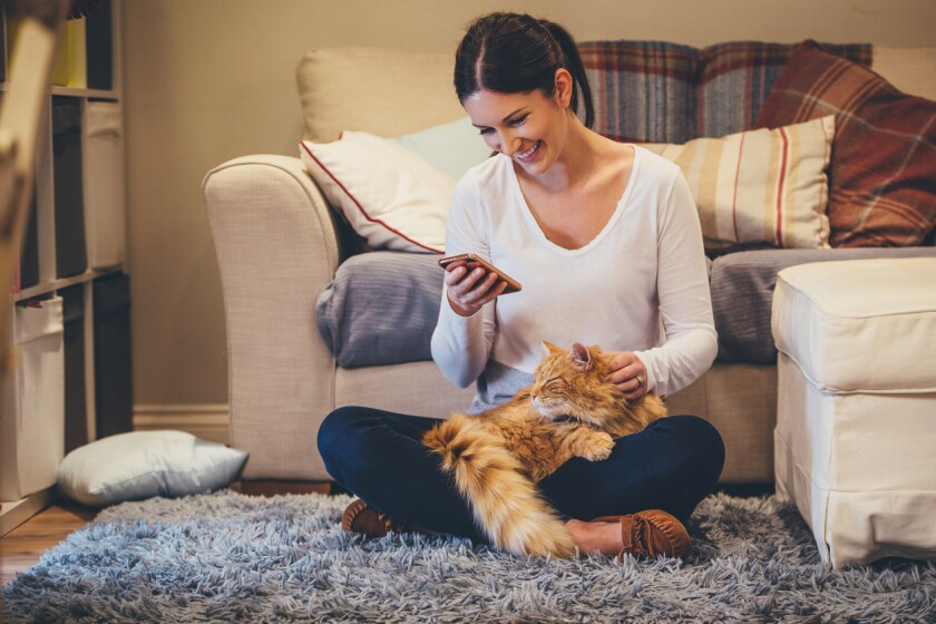 Are pets the key to relationship success? (iStock)