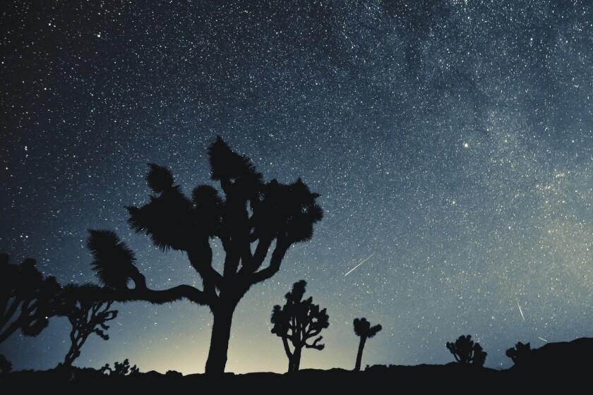 Joshua Tree: Stargazing in the desert sky