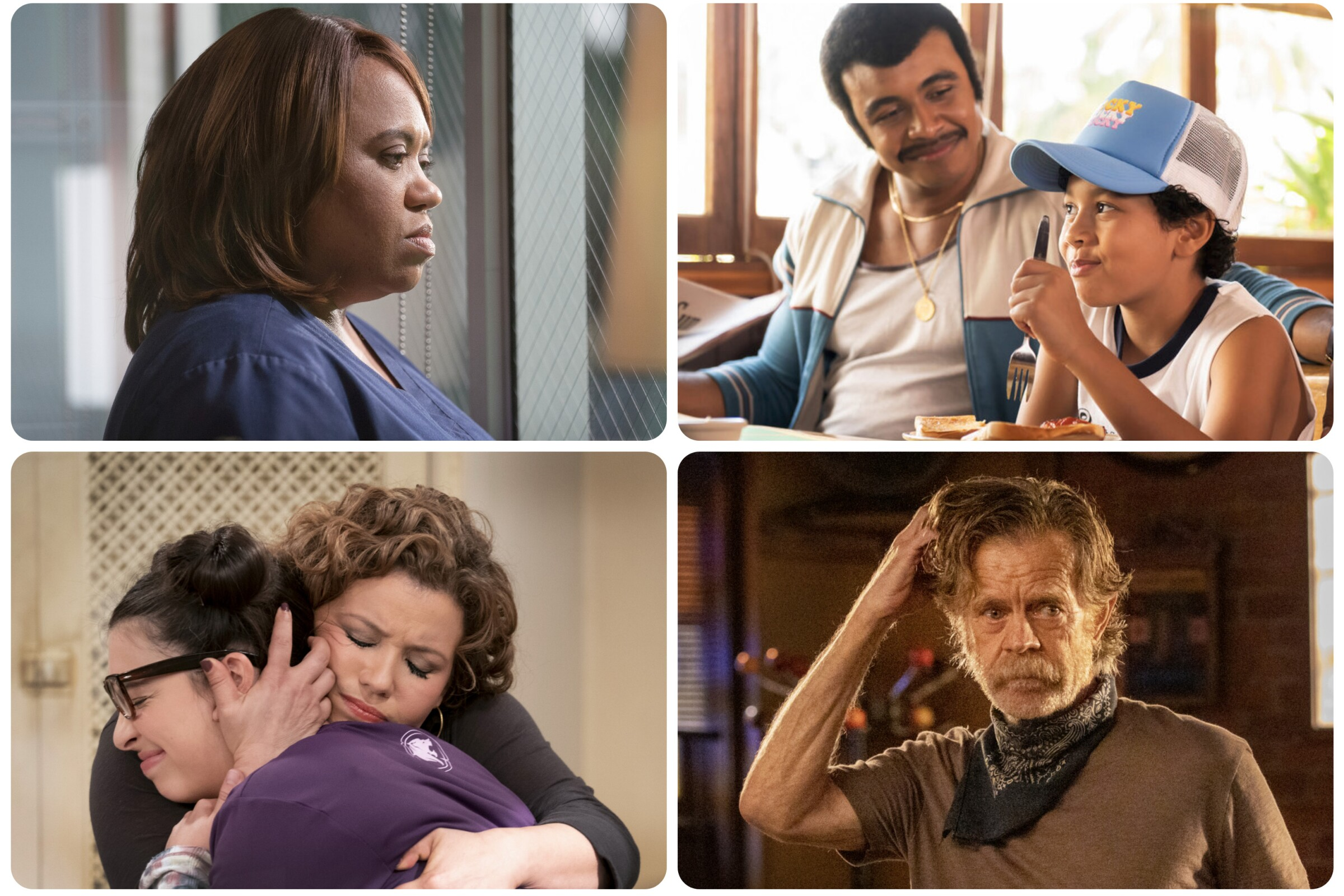 """Grey's Anatomy,"" ""Young Rock,"" ""One Day At A Time,"" and ""Shameless."""