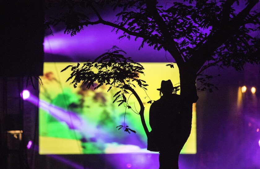 A man in a tree watches Travis Scott's set at Coachella.