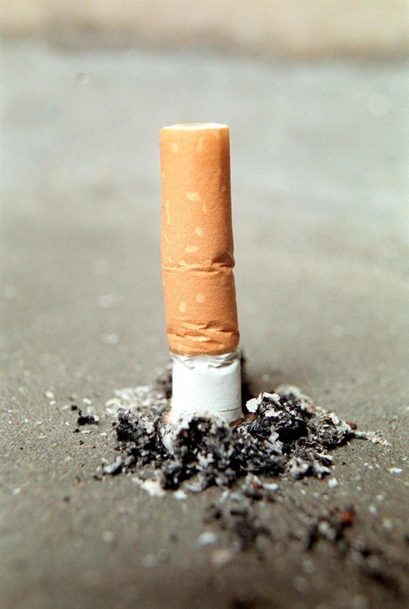 Vista de una colilla de cigarro. EFE/Archivo