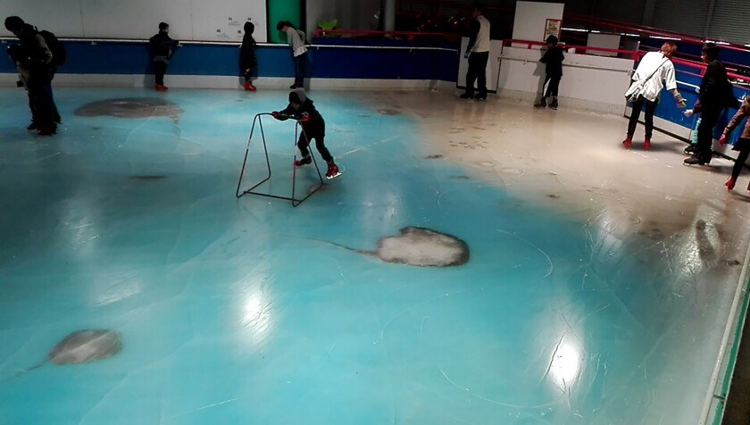The handout picture taken in November 2016 and released on November 28, 2016 shows people skating on an ice rink with 5,000 frozen dead fish inside at the Space World amusement park in Kitakyushu, southwestern Japan.