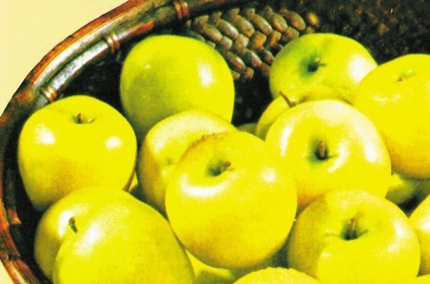 'Dorsett Golden' is a favorite low-chill apple; it's firm, sweet and flavorful.